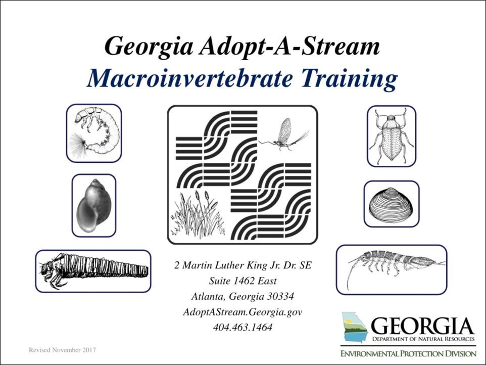 Title slide of macroinvertebrate presentation
