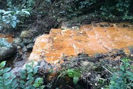 Iron bacteria in stream